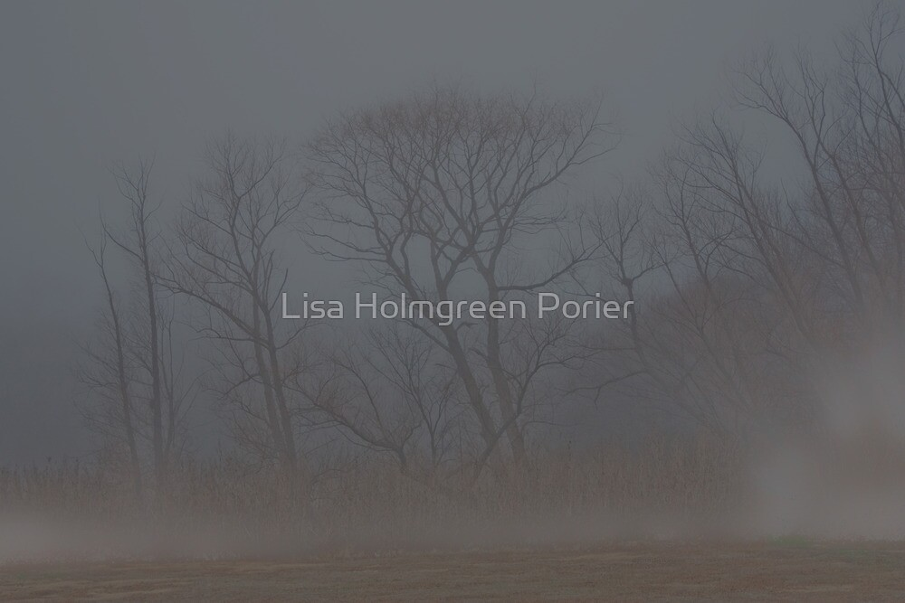 Alone in the Mist by Lisa Holmgreen Porier