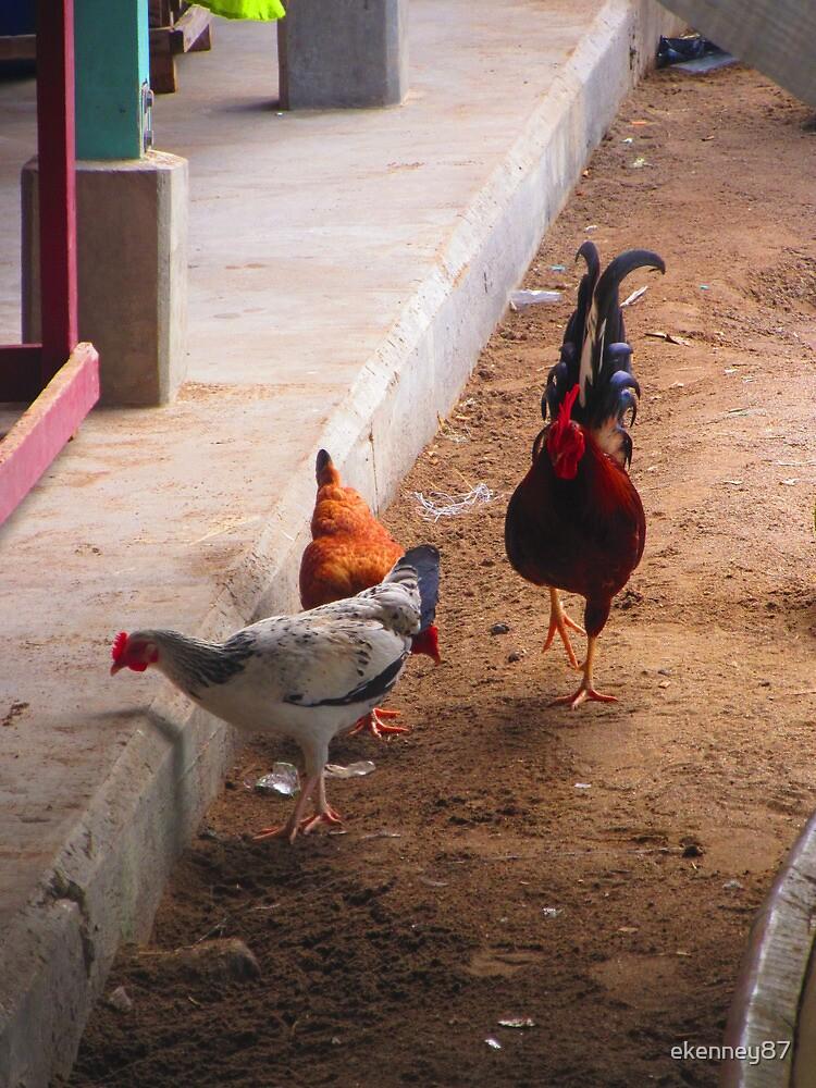 Peck a Little by ekenney87