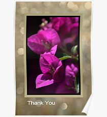 Thank You - Bougainvillea Flowers Poster