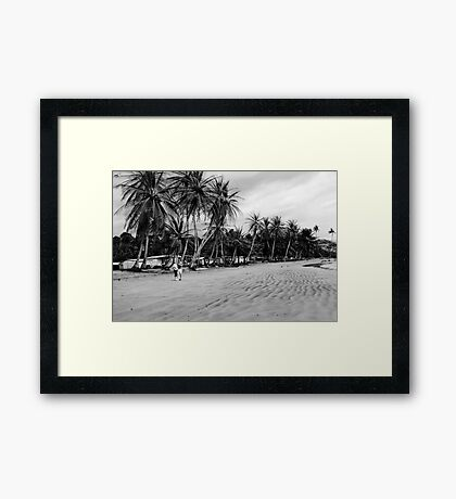 Palms at Arena Blanca Framed Print