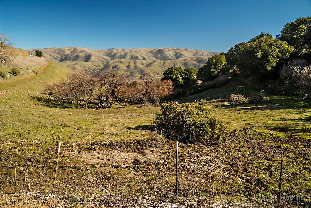 East Hills of the Silicon Valley Region by James Watkins