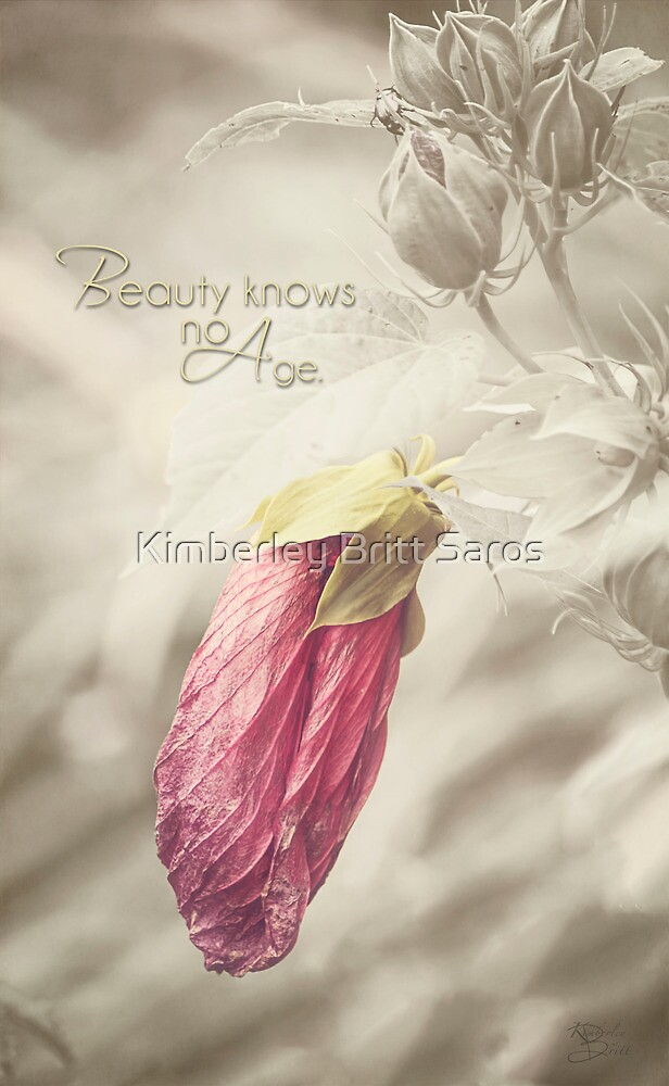 Beauty knows no Age - Text by KBritt