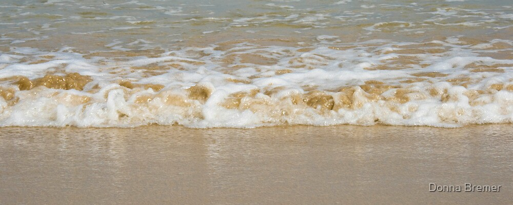 Sand and Sea 3547 by Donna Bremer
