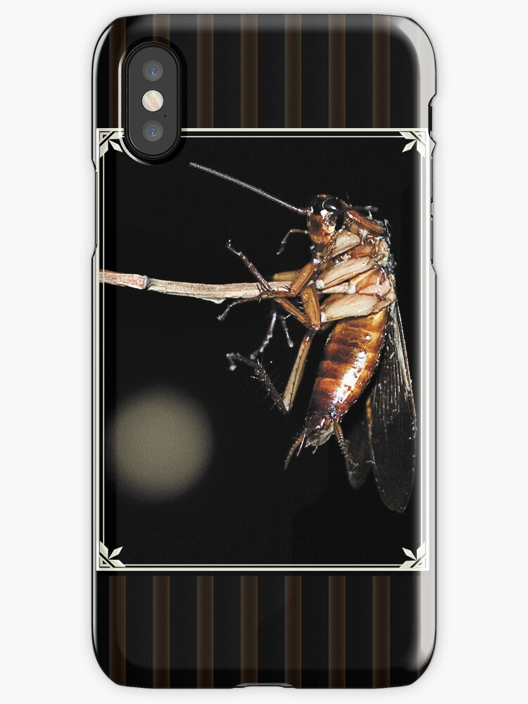 Cockroach on a stick by RusticShiraz