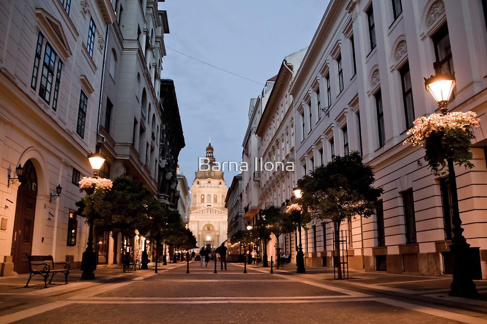 Basilica Budapest, Hungary by BIPHOTO