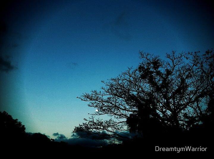 MoonBeam by DreamtymWarrior