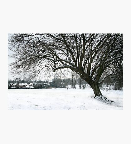 Winter Walk Photographic Print