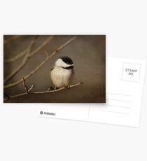 January ~ Postcards