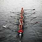 The Head Of The Charles Regatta 3 by d1373l