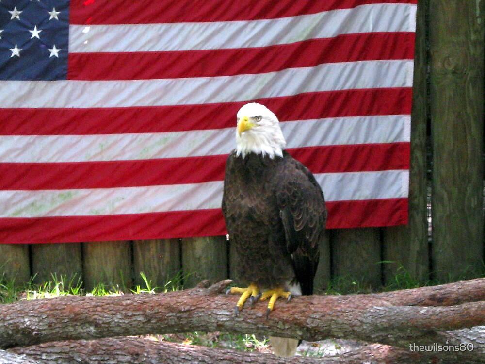 American Pride by thewilsons80