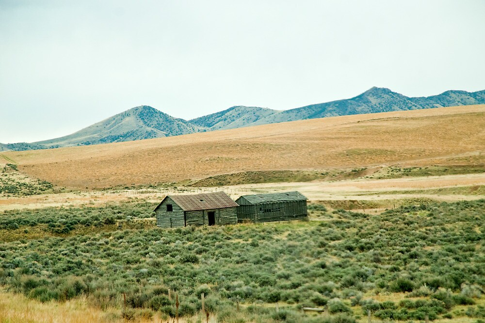 Jefferson County (Montana) Farm by Bryan D. Spellman