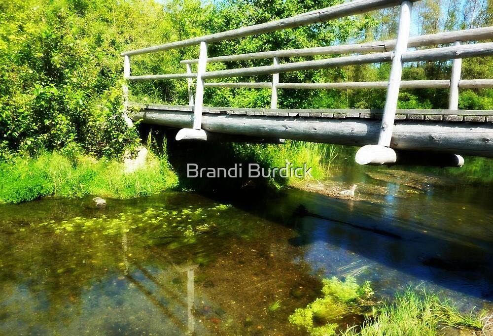 bridge over calm waters~ by Brandi Burdick