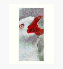 Albatross Art Print