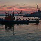 Port of Bell Bay at Dusk by fotosic