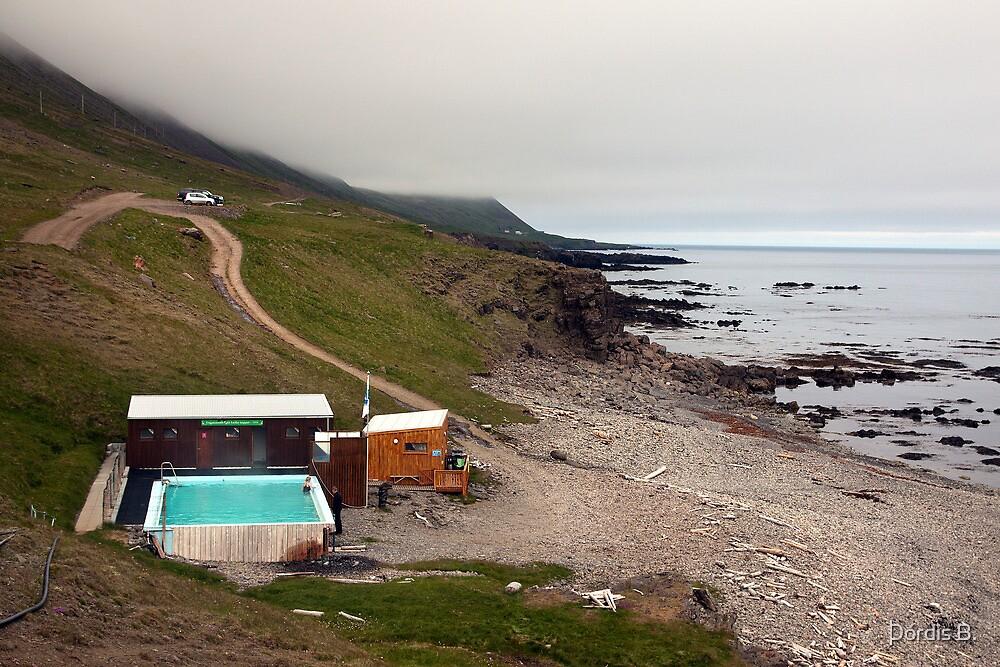 Krossanes by Þórdis B.