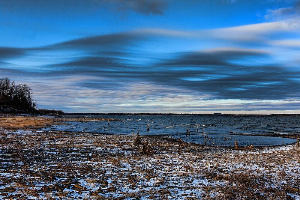 Winter Beach by Carolyn  Fletcher