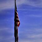 USA by Tyler Elbert