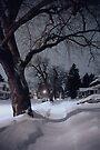 Midnight Snow On High Street by Gene Walls
