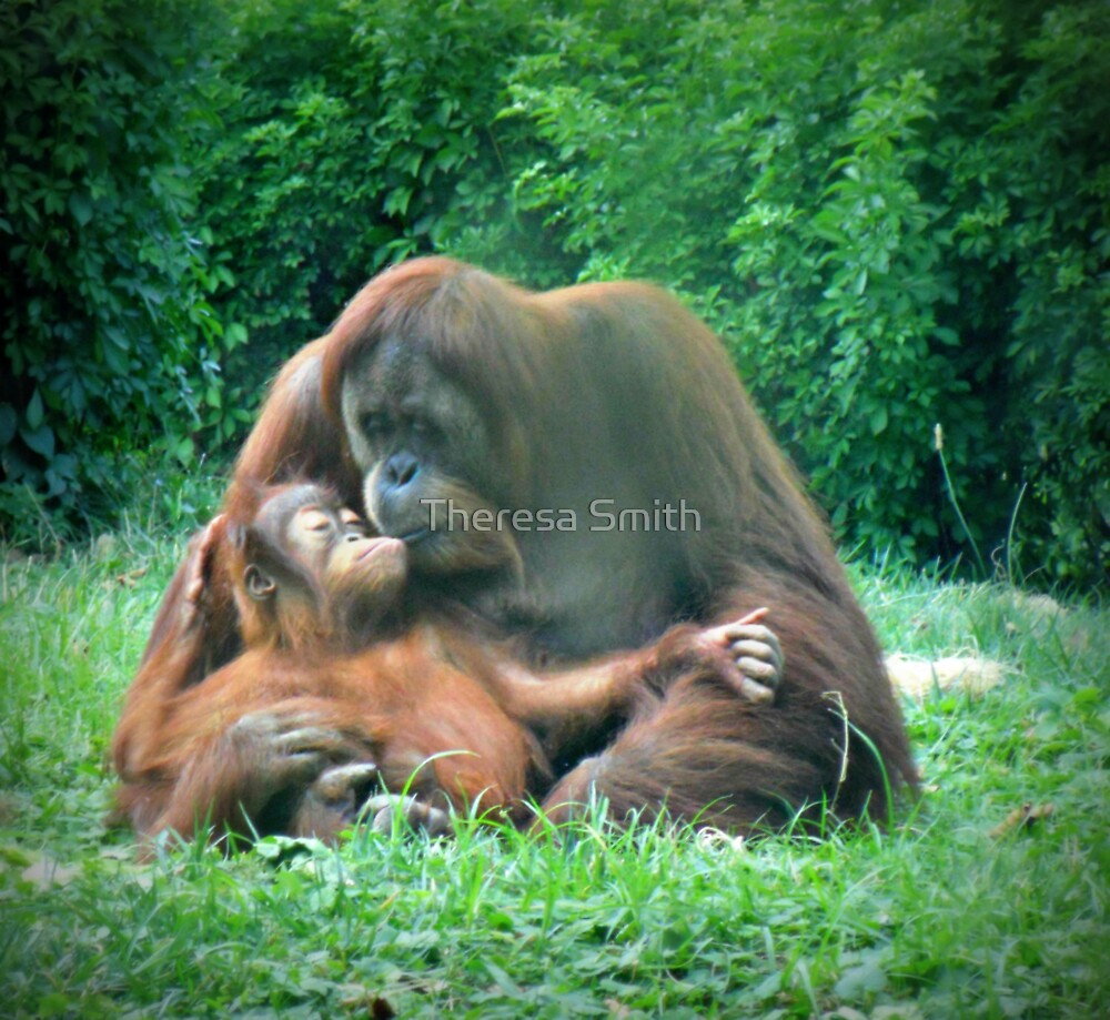 A Mother's Love by Theresa Smith