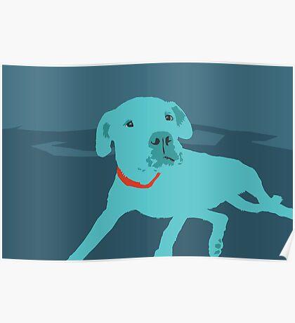 Bobdog Poster