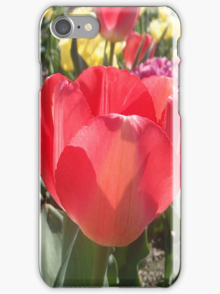 Tulips by ThePaintedLady