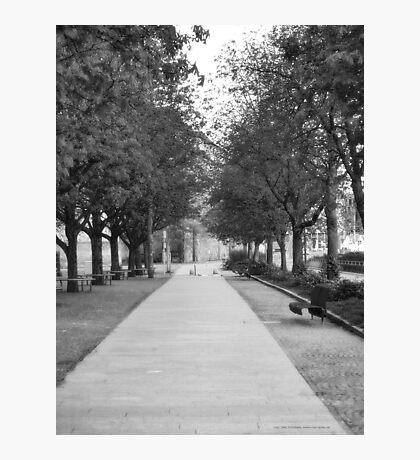Short Allee near the Stuttgarter Schloß VRS2  Photographic Print