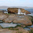 The Rocks at Pearl Beach by Alfredo Estrella