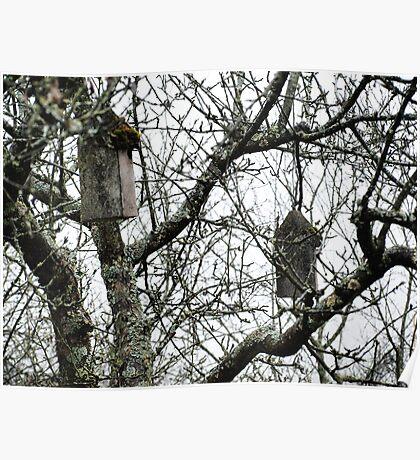Hanging Bird Houses VRS2 Poster