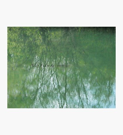Fish in the Pond VRS2 Photographic Print