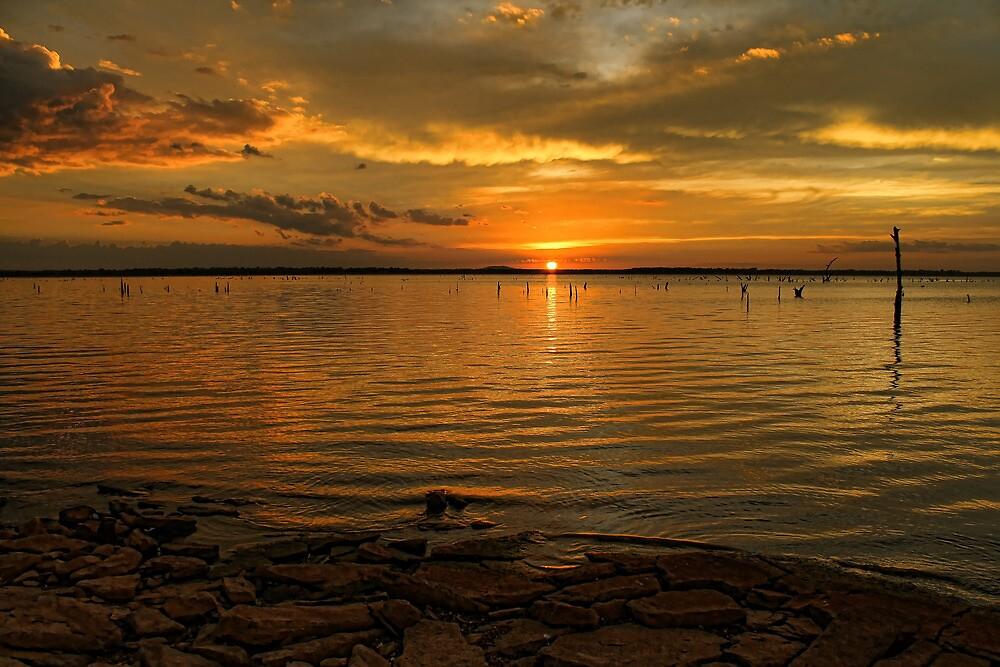 Golden Sunset Hour by Carolyn  Fletcher