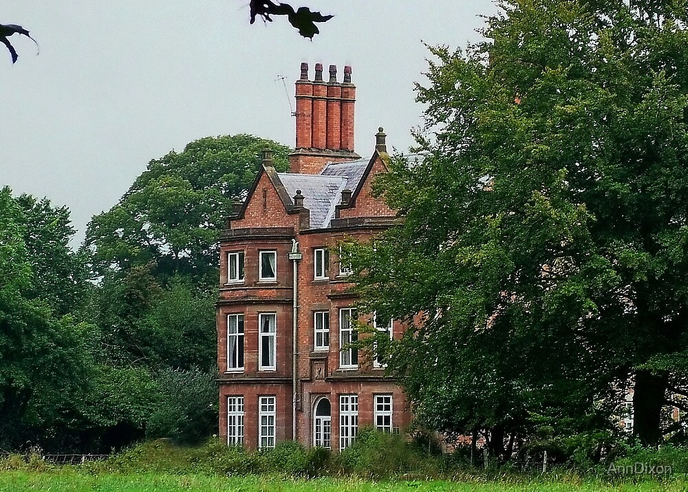 The Chimney's of Stoke Manor Nr.Nantwich Cheshire by AnnDixon