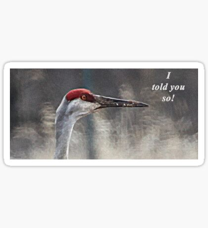 I told you so! Sticker
