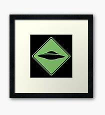 X-Files - UFO Framed Print
