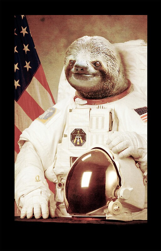 sloth astronaut picture - 513×800