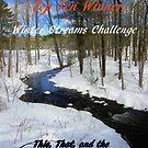 Top Ten Winner - Winter Streams by quiltmaker