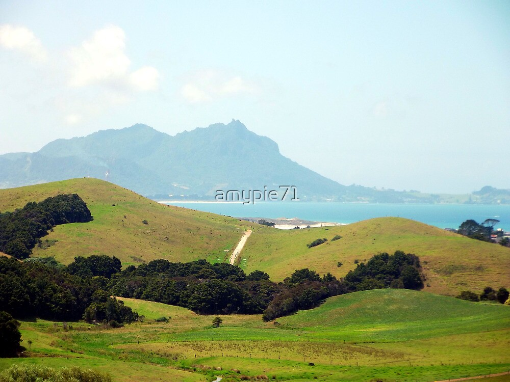 View of Whangarei Heads by amypie71