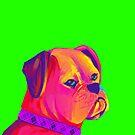 Boxer (Green) by shakusaurus