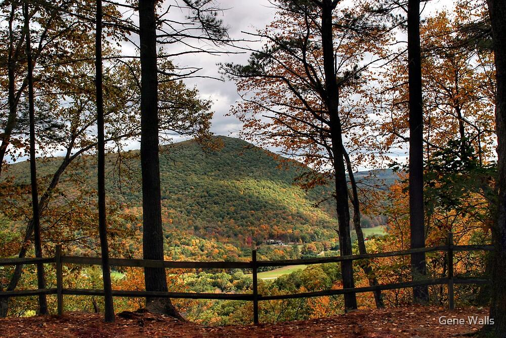 Doe Pen Vista Overlook by Gene Walls