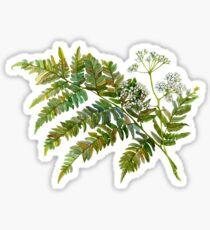 Aquarell Farn und Blumen Sticker