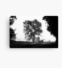 Countryside road Canvas Print