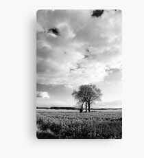 Tree group Canvas Print