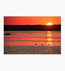 Birding til Sunset Photographic Print