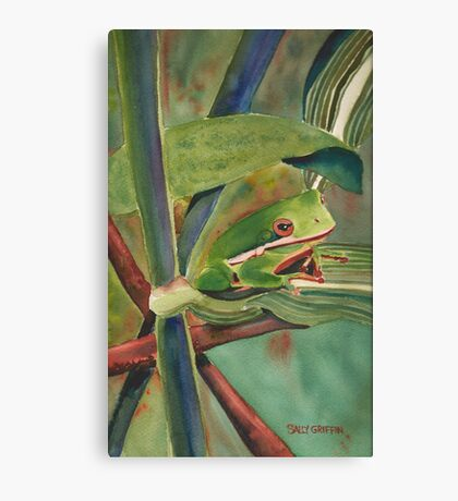 Tell Me a Tale, Tree Frog Canvas Print