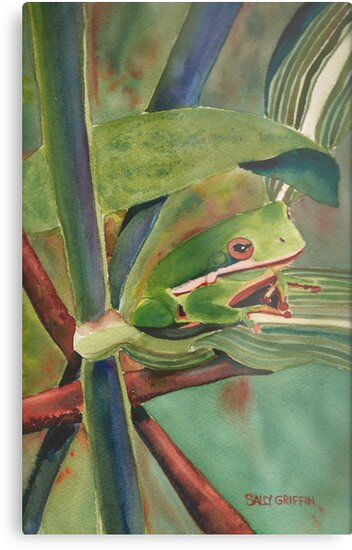 Tell Me a Tale, Tree Frog by Sally Griffin