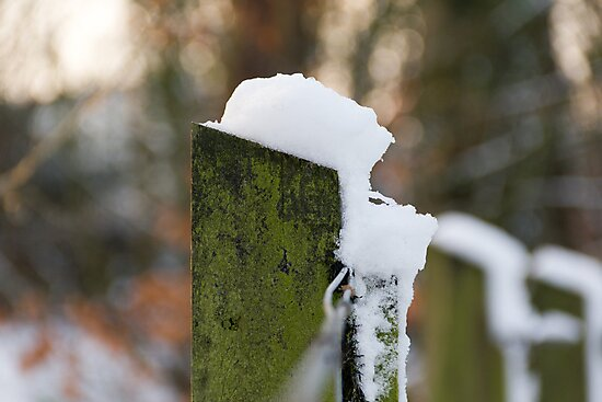 Snowy Fence by stay-focussed