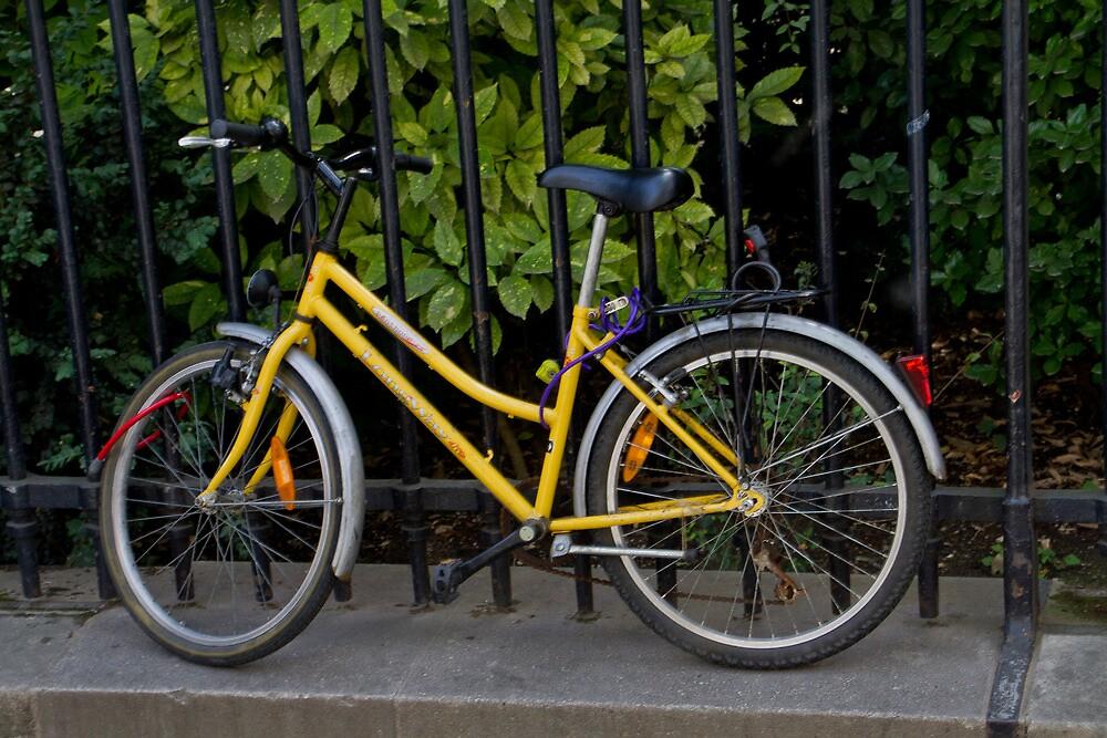 Yellow Bicycle by GW-FotoWerx