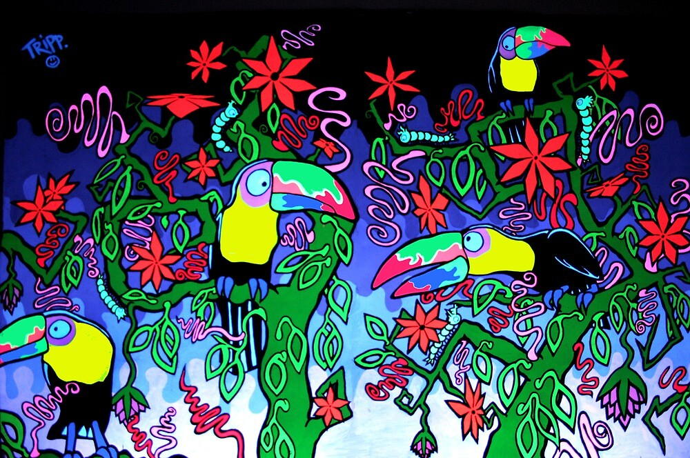 Toucan Tops by Tristan Bristow