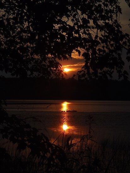 Sunset Ducks by DrewK