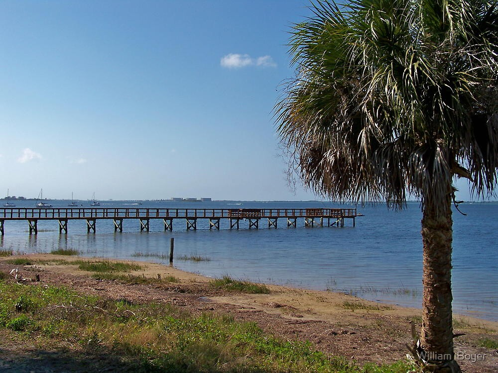 Dock on the beach 1 by William  Boyer