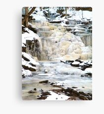 Accepting the Seasons Canvas Print